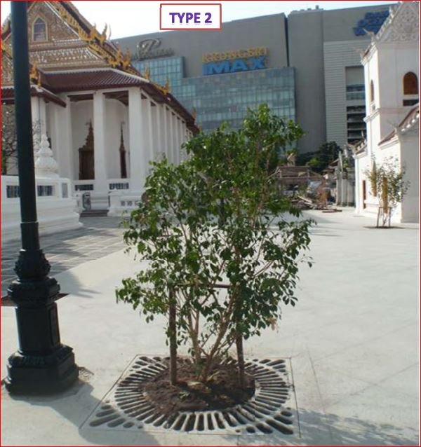 Tree Grate Guard กรอบตะแกรงปกป้องรอบโคนต้นไม้